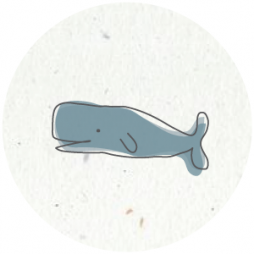 sluitsticker-walvis