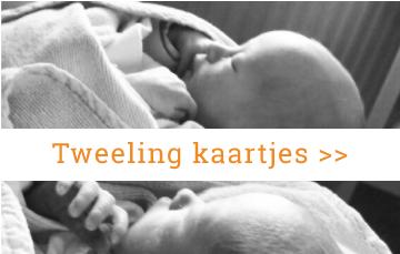 Tweeling-geboortekaartjes-origineel-ieder-kind-zijn-eigen-kaartje-BrengOver-Kaartjes