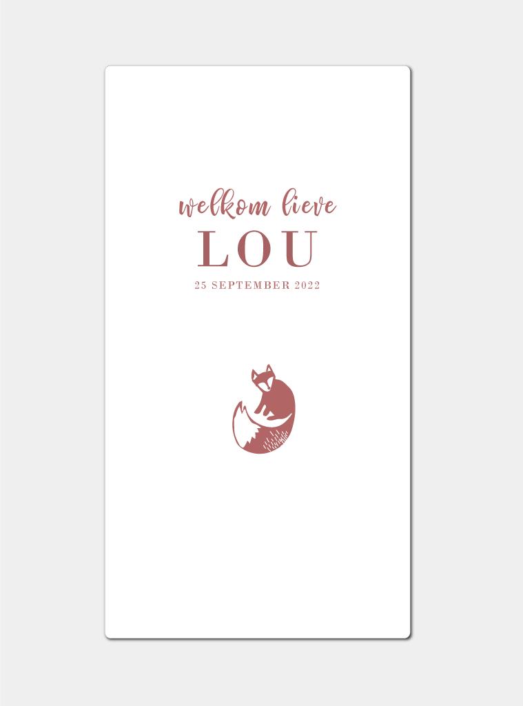 Geboortekaartje vosje minimalistisch brengover kaartjes