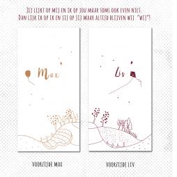 tweelinggeboortekaartje meisje jongen getekend landschap brengover kaartjes
